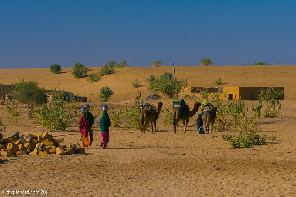 camel-safari-india-4