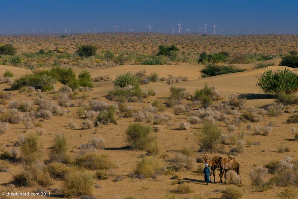 camel-safari-rajasthan-india-5