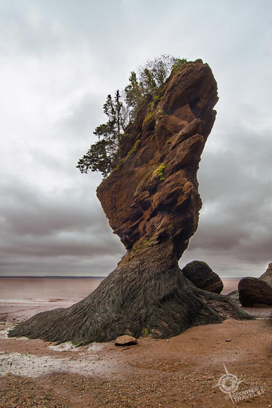 best canadian adventures hopewell rocks