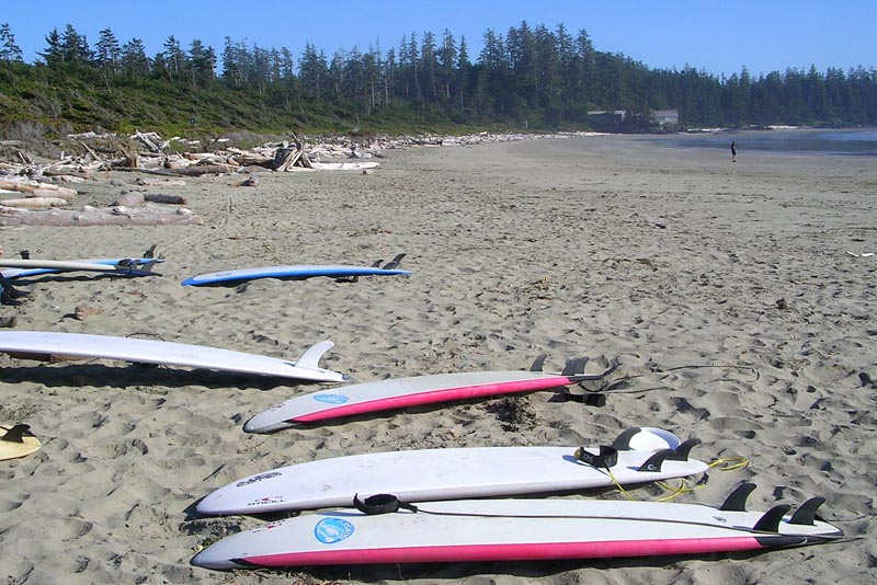 surfing tofino a great canadian adventure