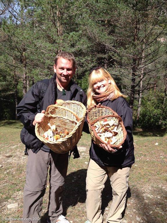 canadas greatest explorer mushrooms