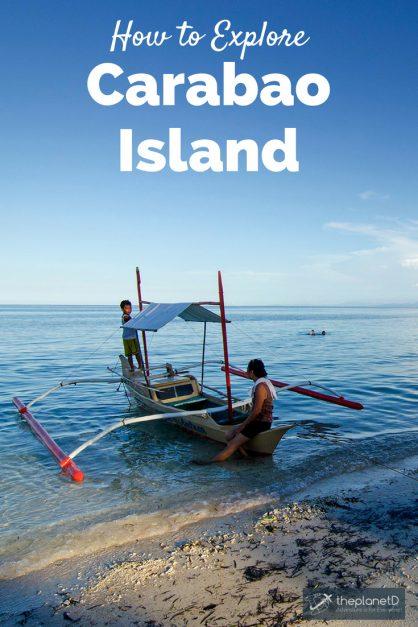 Carabao Island Pinterest