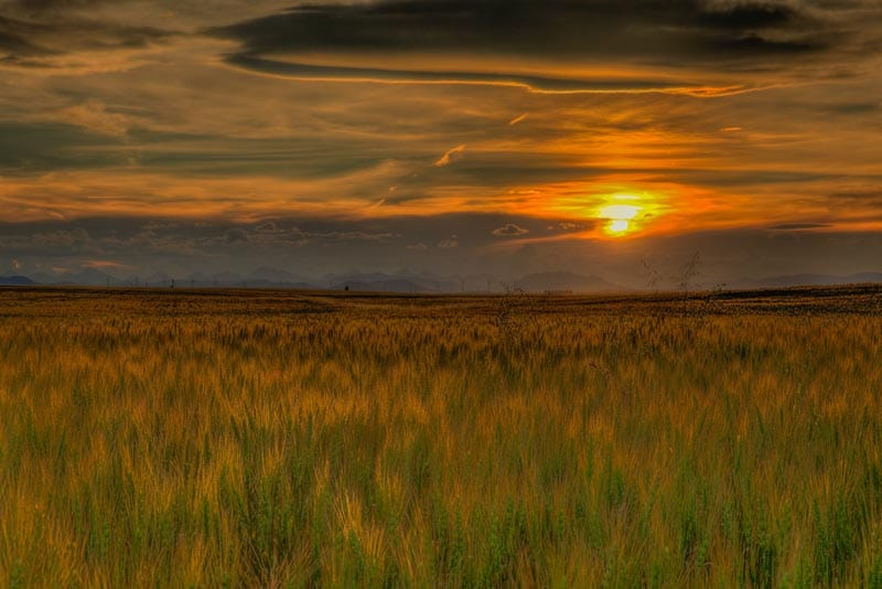 sunset over prairies of Pincher Creek Alberta