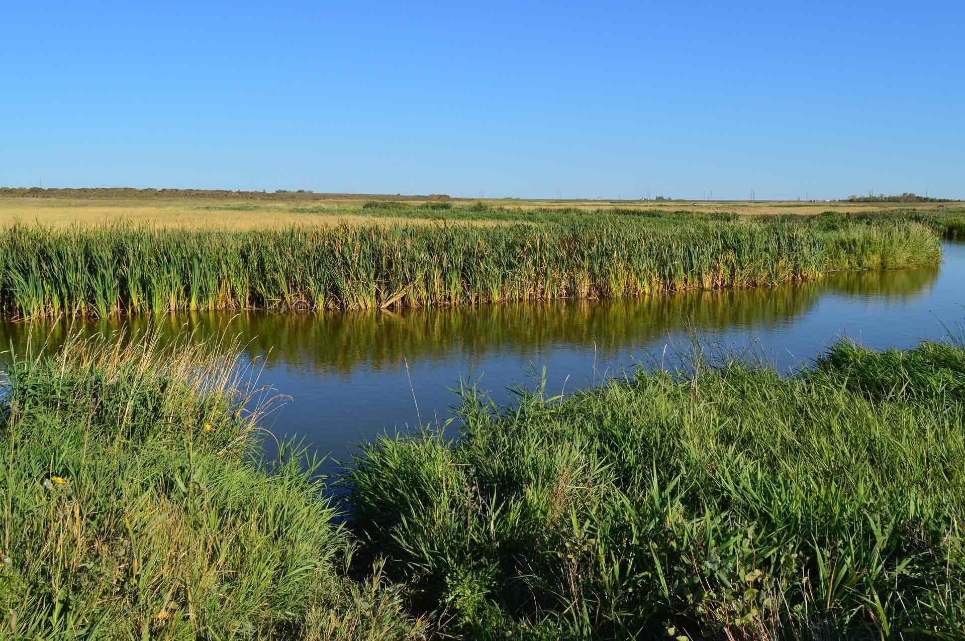 conservation area saskatchewan