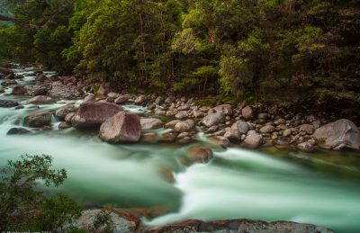 daintree rainforest river