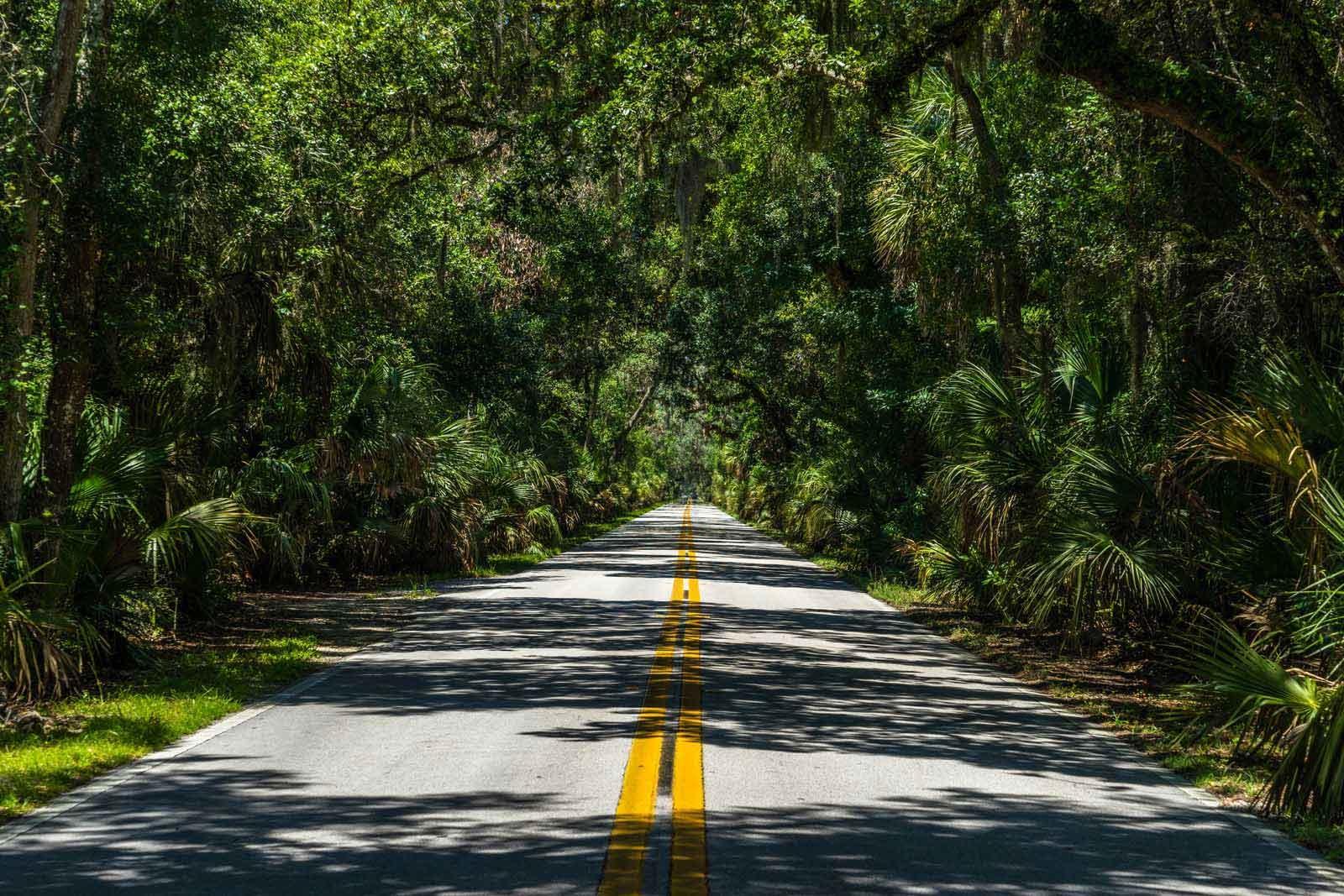 tomoka state park florida road
