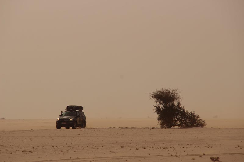 budapest bamako rally sarah desert