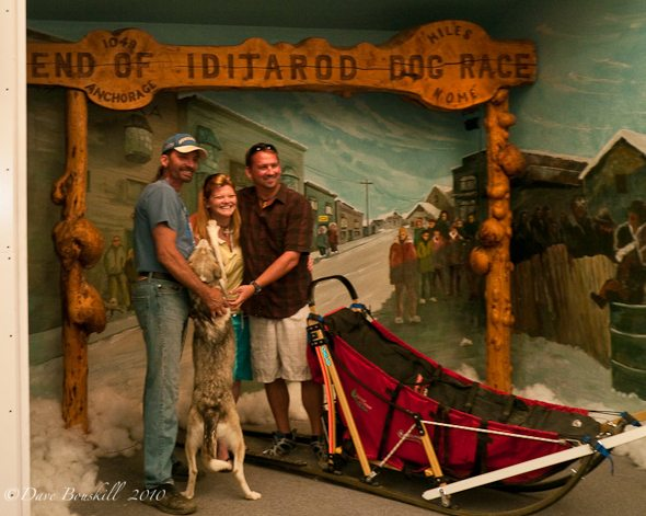 dogsled epic winter adventure