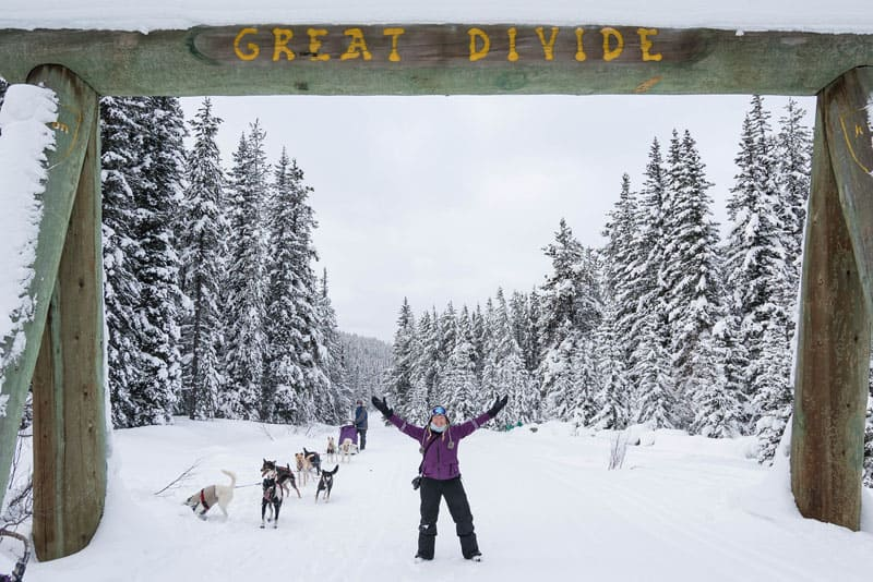 dogsledding banff great divide
