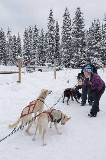 dogsledding banff pack