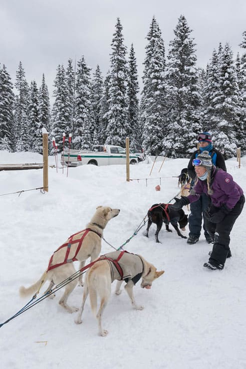 dogsledding banff pack