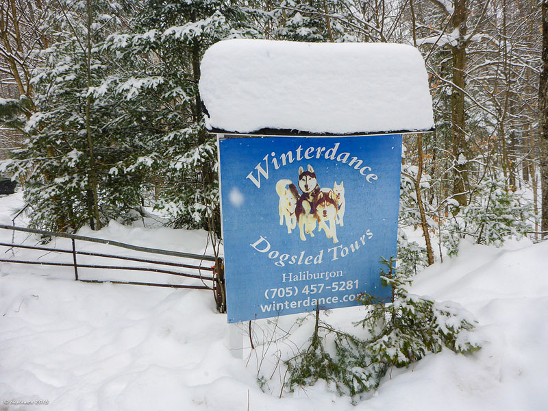 dogsledding ontario sign