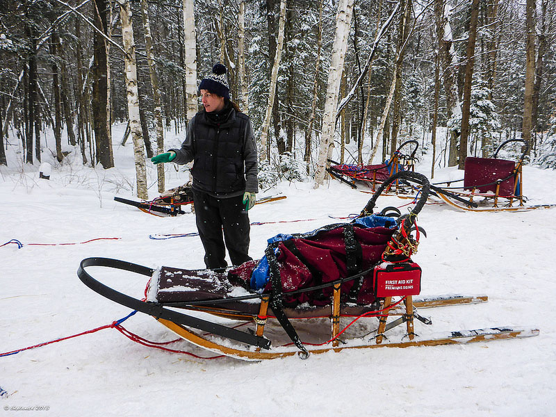 ontario sled