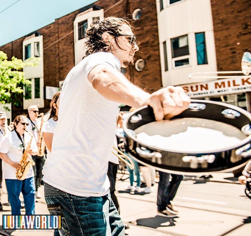 dundas west festival tamborine
