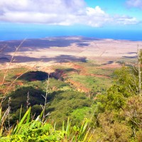 lanai conservation project watershed recovery