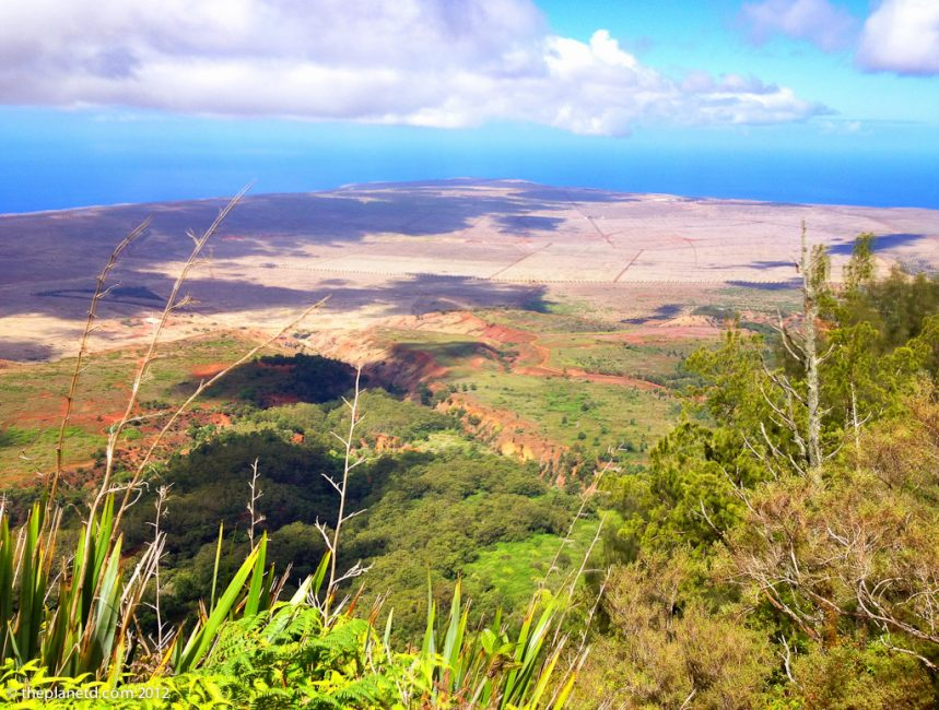 Lanai, Hawaii – Fixing a Fragile Eco System One Plant at a Time