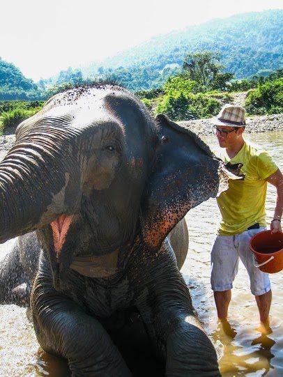 elephant tourism 1