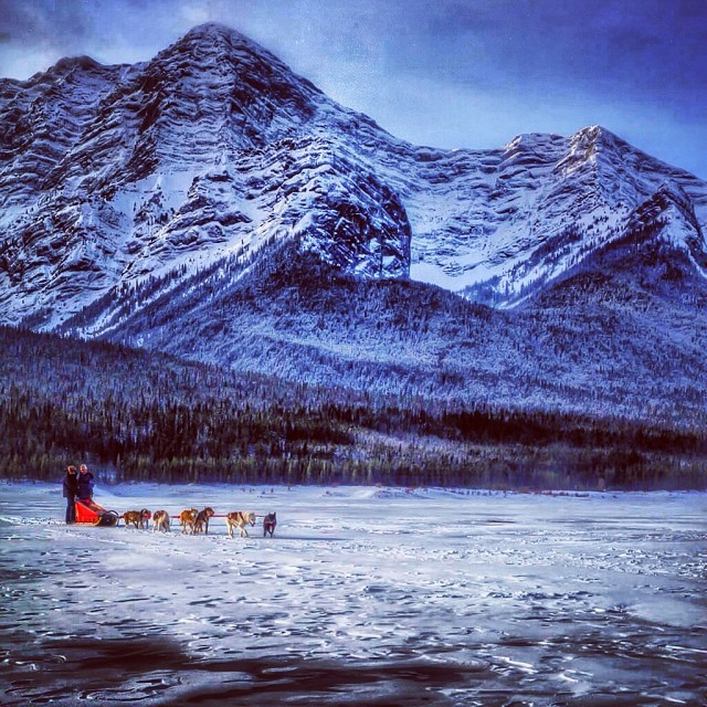 frozen lake with dogsledding