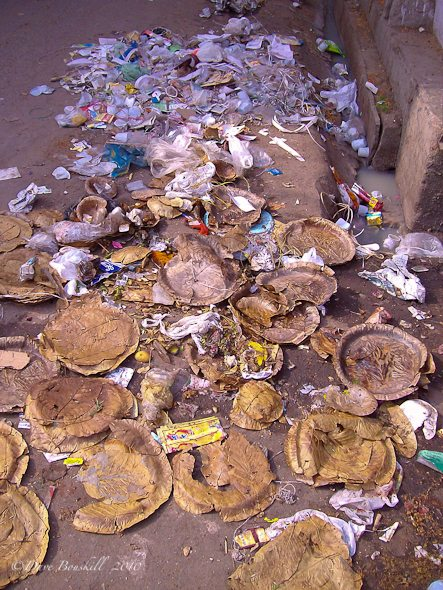garbage contributes to making India filthy