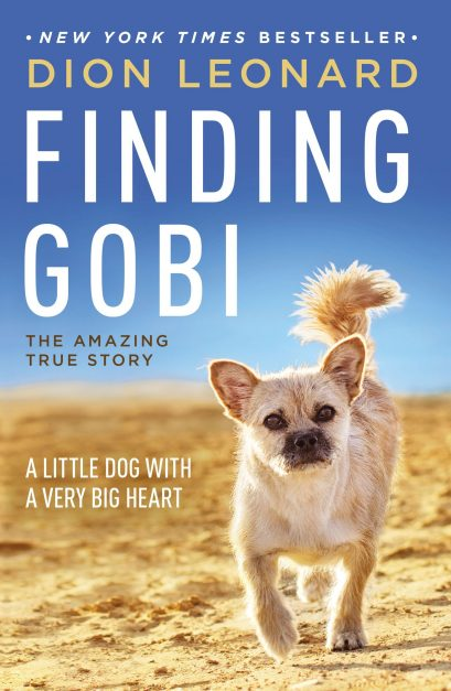 finding gobi book about adventure travel