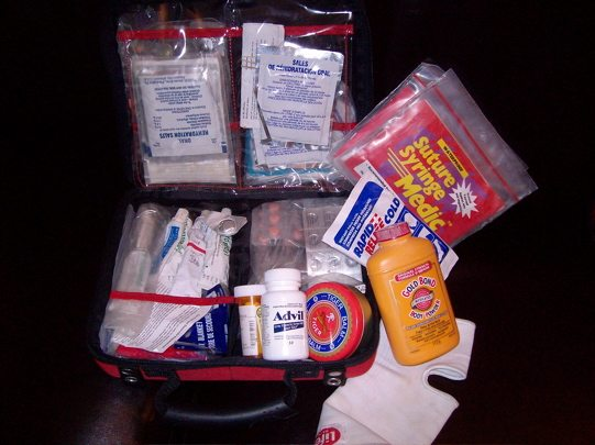"trousse de premiers secours | ""class ="" wp-image-19452 ""srcset ="" https://theplanetd.com/images/first-aid-kit-for-travel.jpg 541w, https://theplanetd.com/images/first-aid- kit-for-travel-390x292.jpg 390w, https://theplanetd.com/images/first-aid-kit-for-travel-400x300.jpg 400w ""tailles ="" (largeur maximale: 541px) 100vw, 541px"