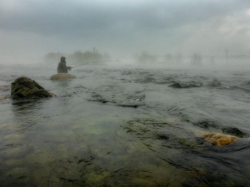 ontario fog