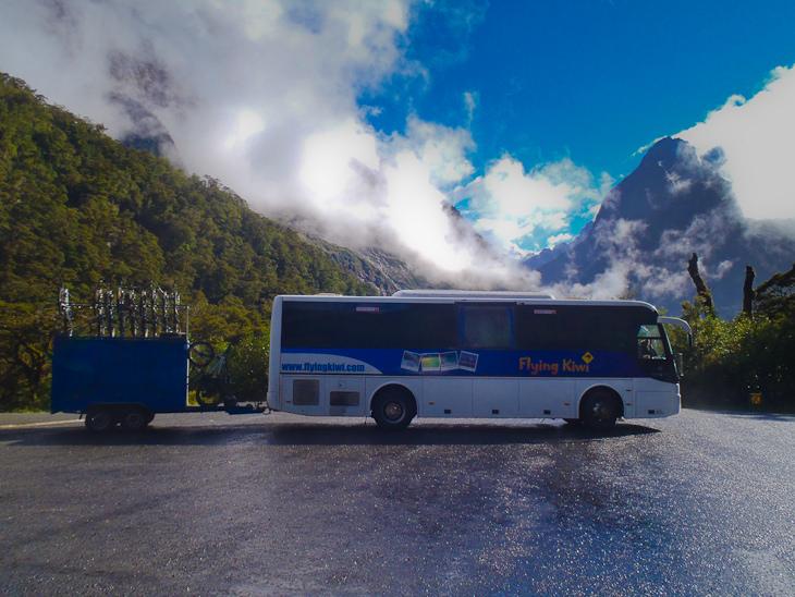 flying kiwi bus