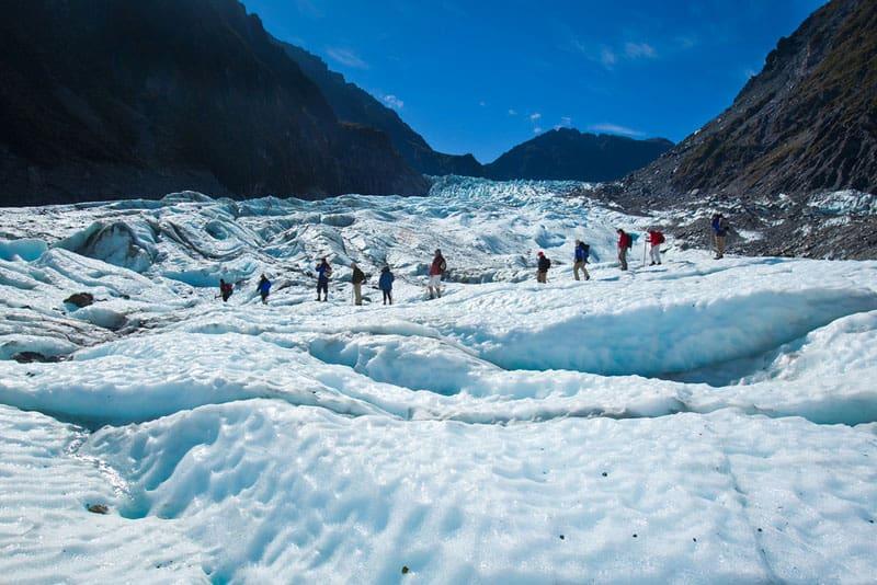fox glacier group
