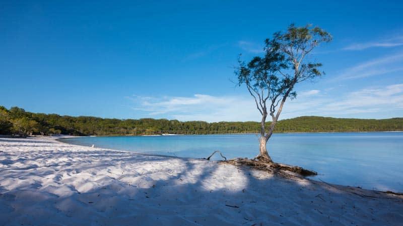 fraser island's Lake McKenzie
