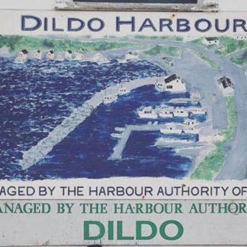 funny city names in Canada | Dildo Harbour