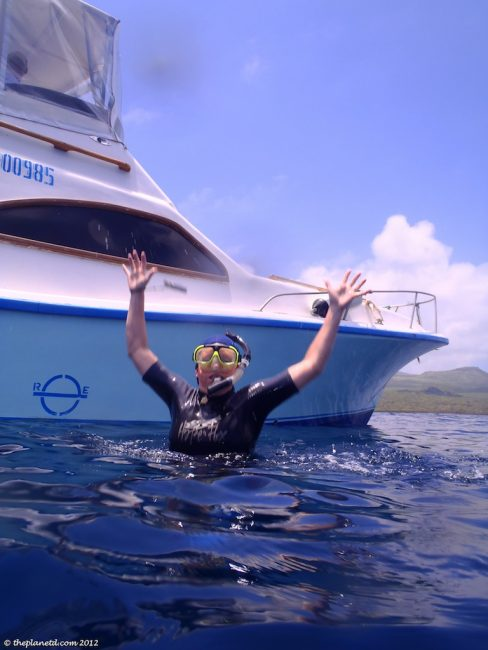 snorkelling in the galapagos islands