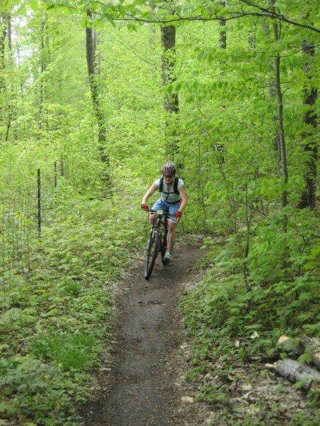 mountain biking blue mountains
