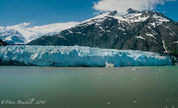 glacier bay cruise glacier bay