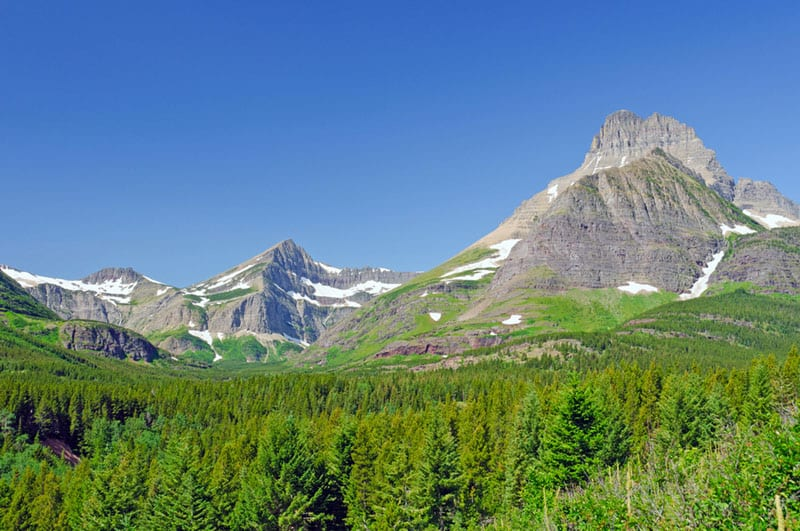 glacier national park hikes Swiftcurrent Pass