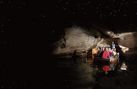 glowworm caves group