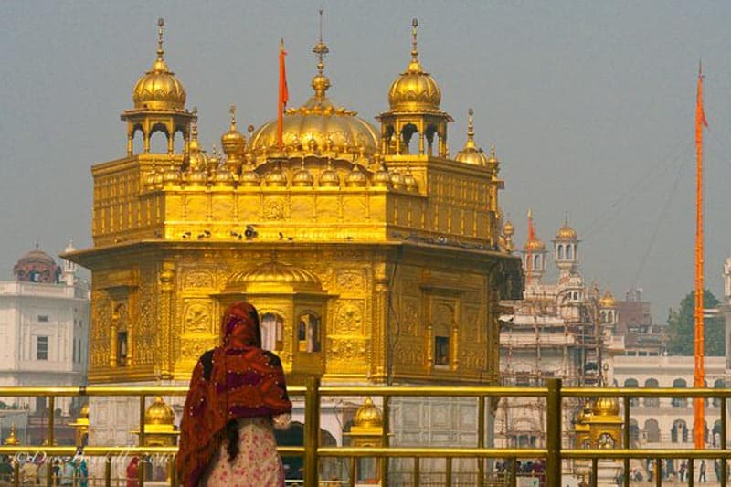golden embossed work paintings and sikh architecture india art temple great in gold of