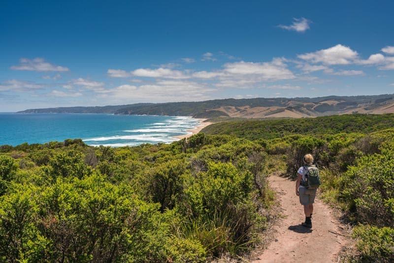 hiking trail along the coast of australia