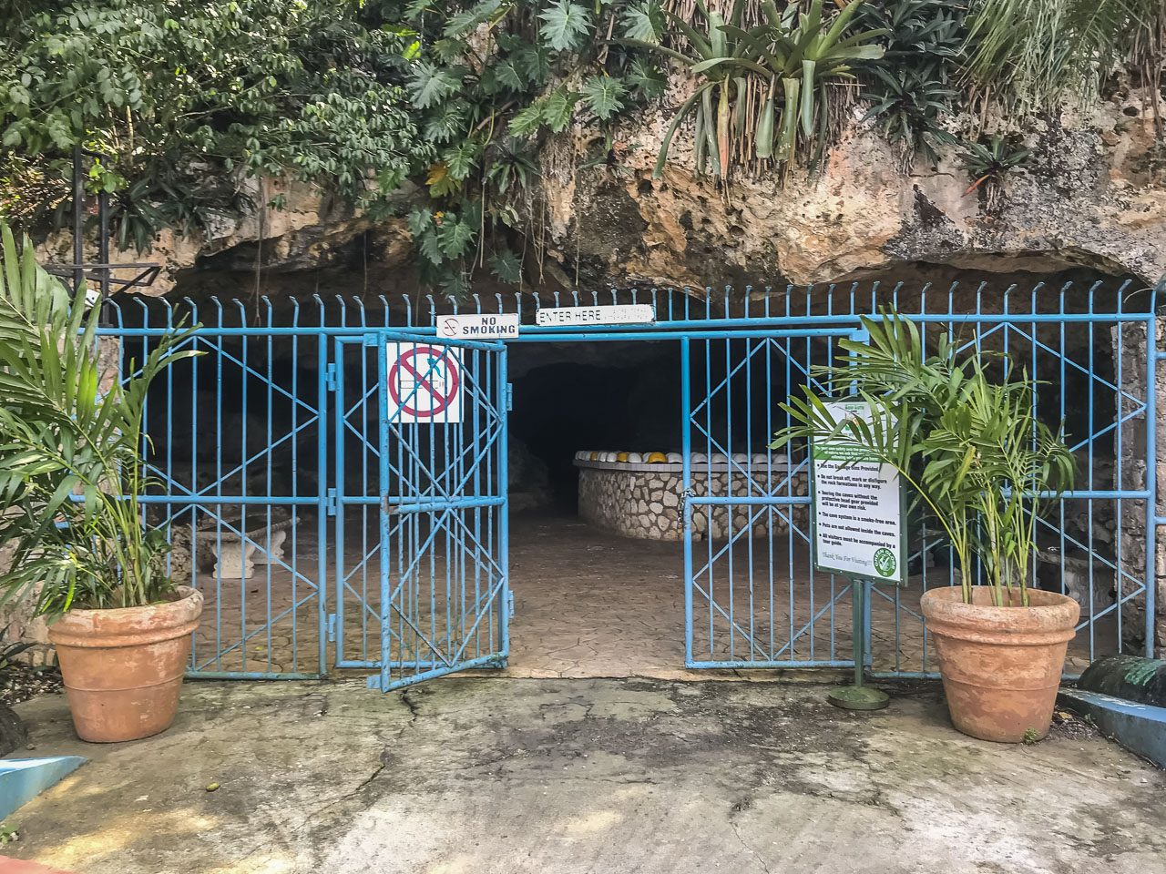 Entering the Green Grotto Caves in Jamaica
