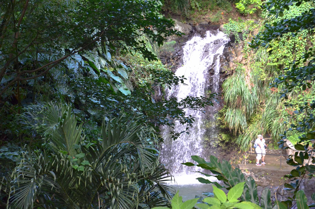 grenada things to do waterfalls
