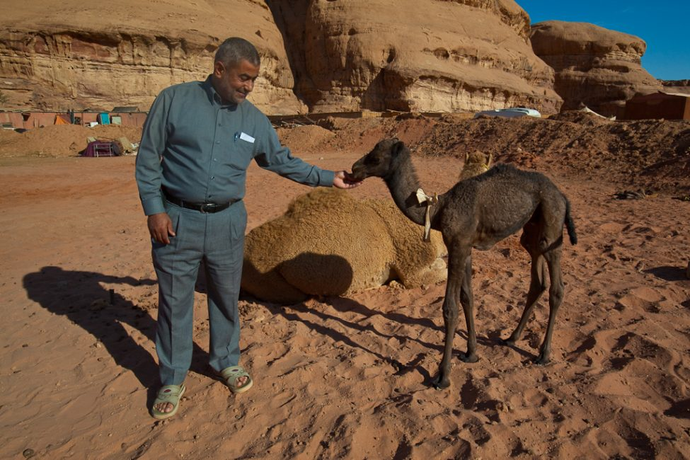 man with camel in wadi rum jordan