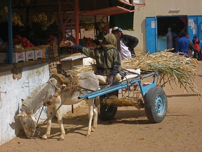 A Market in Wadi Halfa, Sudan