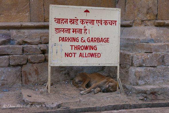 Don't Throw Garbage Sign