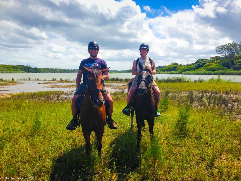horses lake