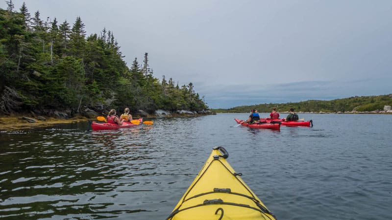 kayaking nova scotia group
