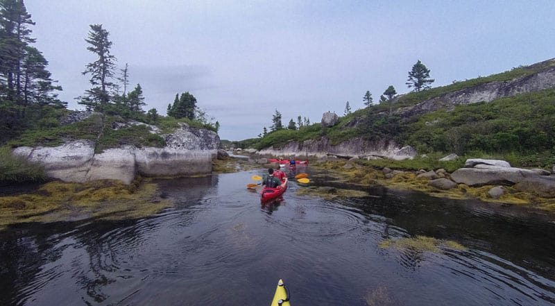 kayaking nova scotia ocean