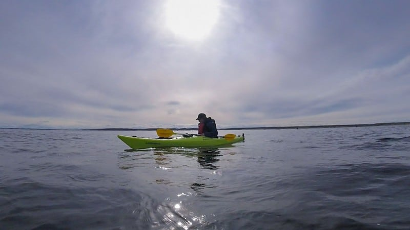 kayaking with Beluga Whales in Manitoba Canada - Dave filming whales