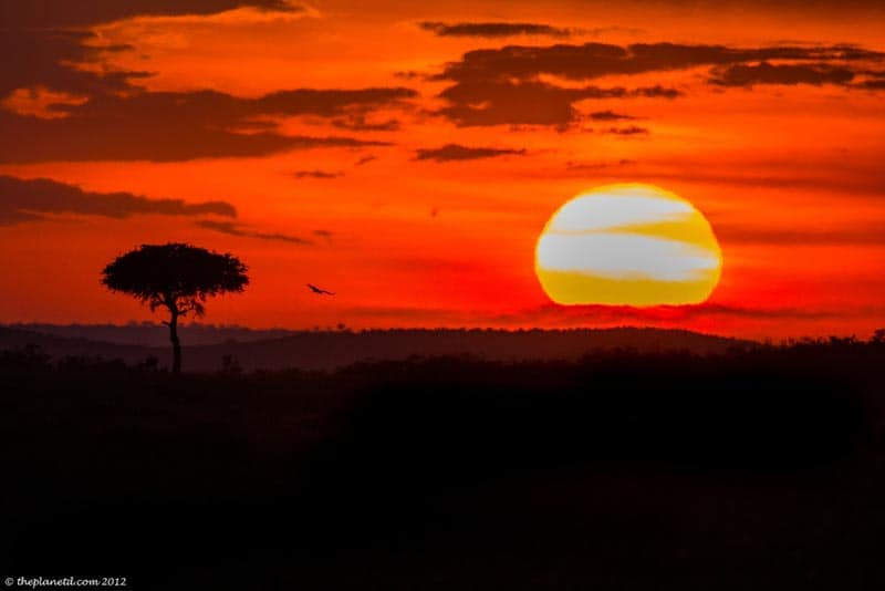 pictures of kenya sunset over masai mara