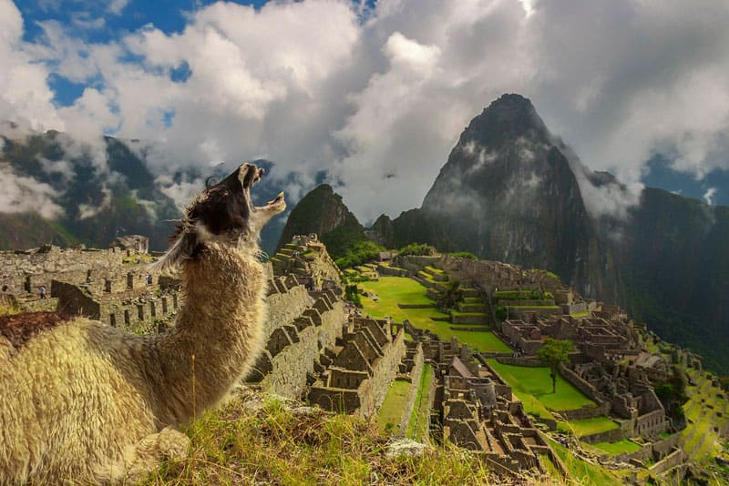 life well travelled machu picchu