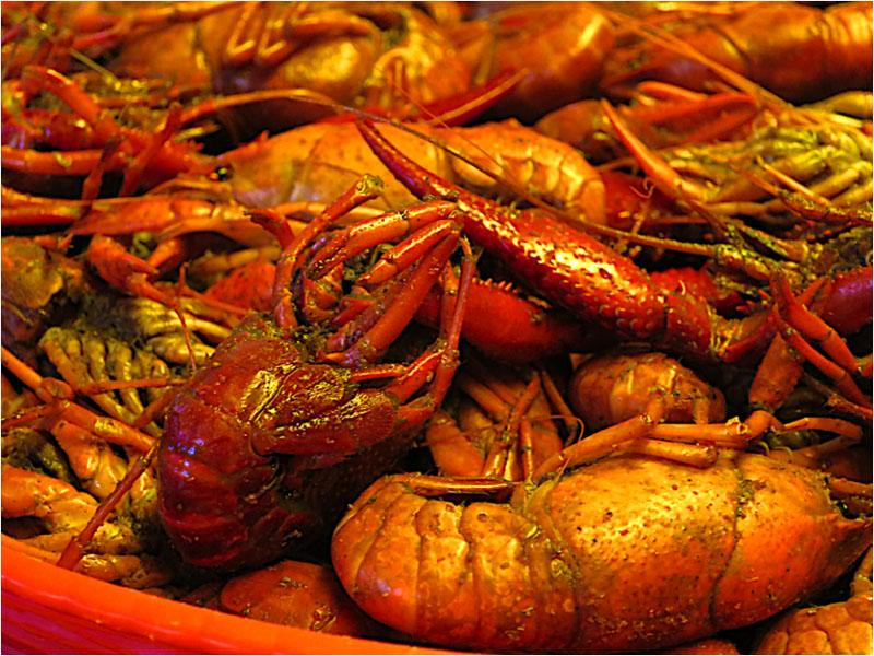 shrimp mardi gras