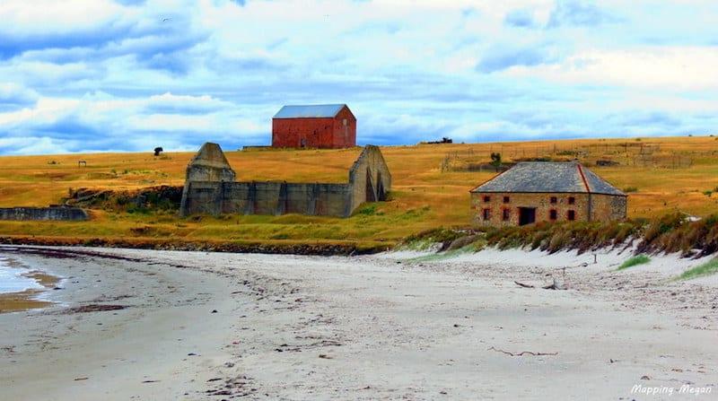 maria island australia farm